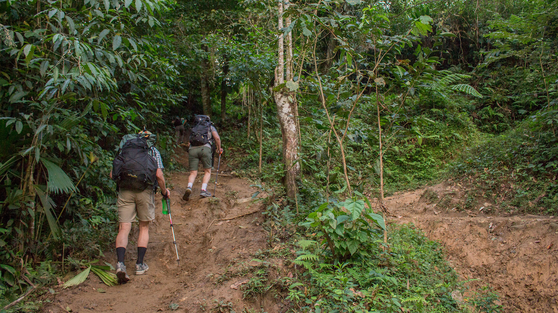 Lost City Colombia Trek