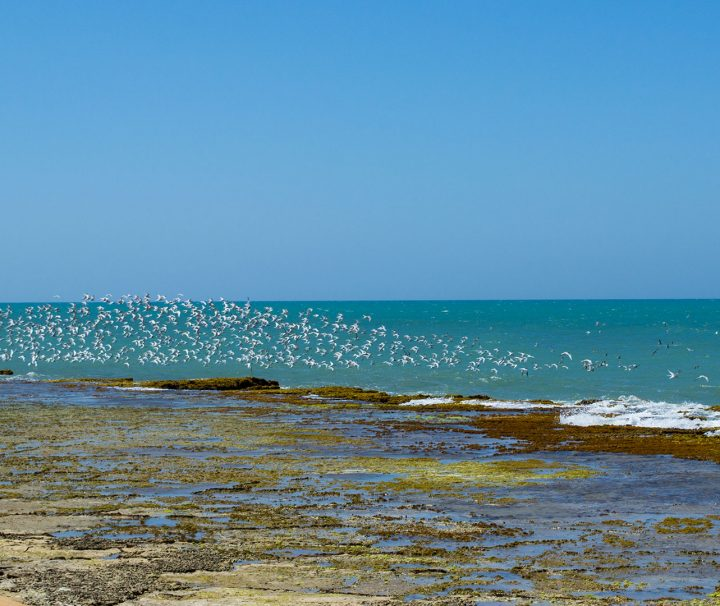 punta_gallinas_colombia__5