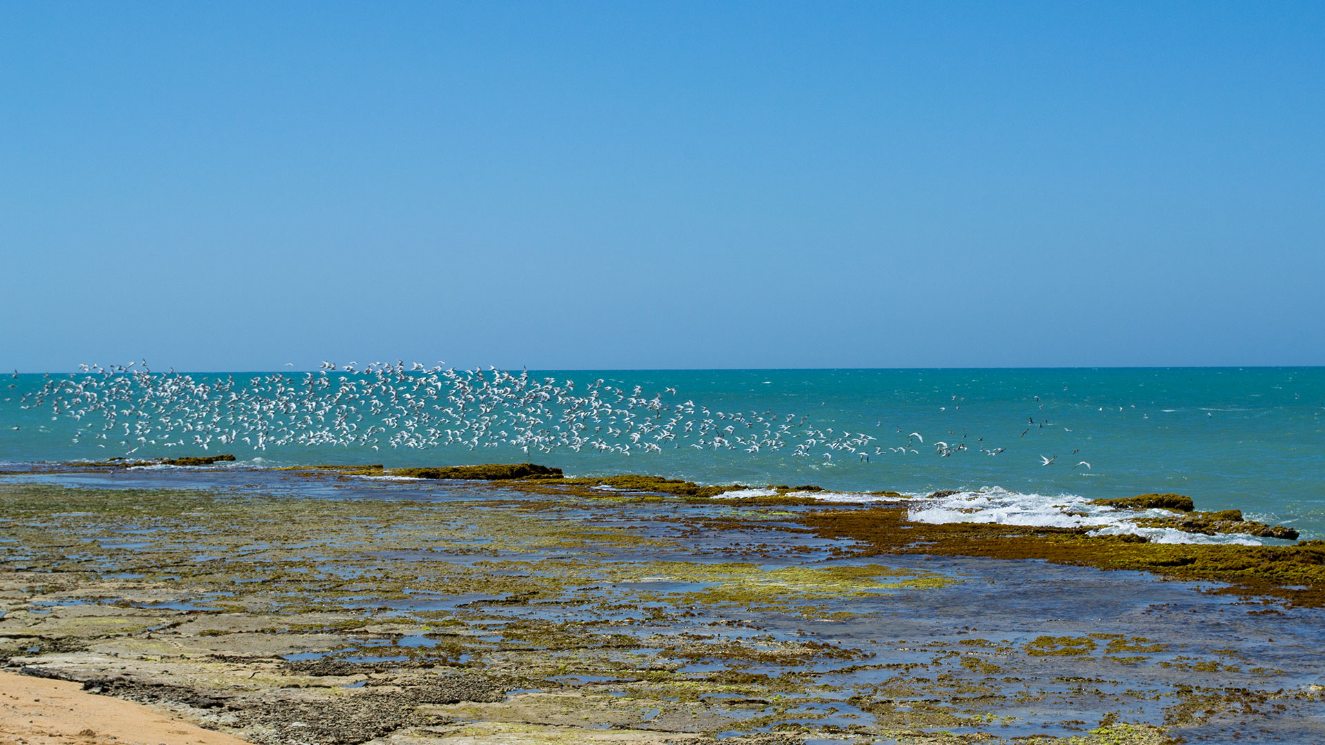 Punta Gallinas - Guajira | Magic Tour Colombia