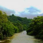 QUEBRADA DEL SOL, colombia