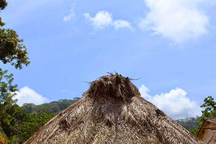 Rancho-tradicional-Kogui-con-techo-de-Palma-Agria-y-paredes-de-Tablon-de-Arbol-de-Makeke