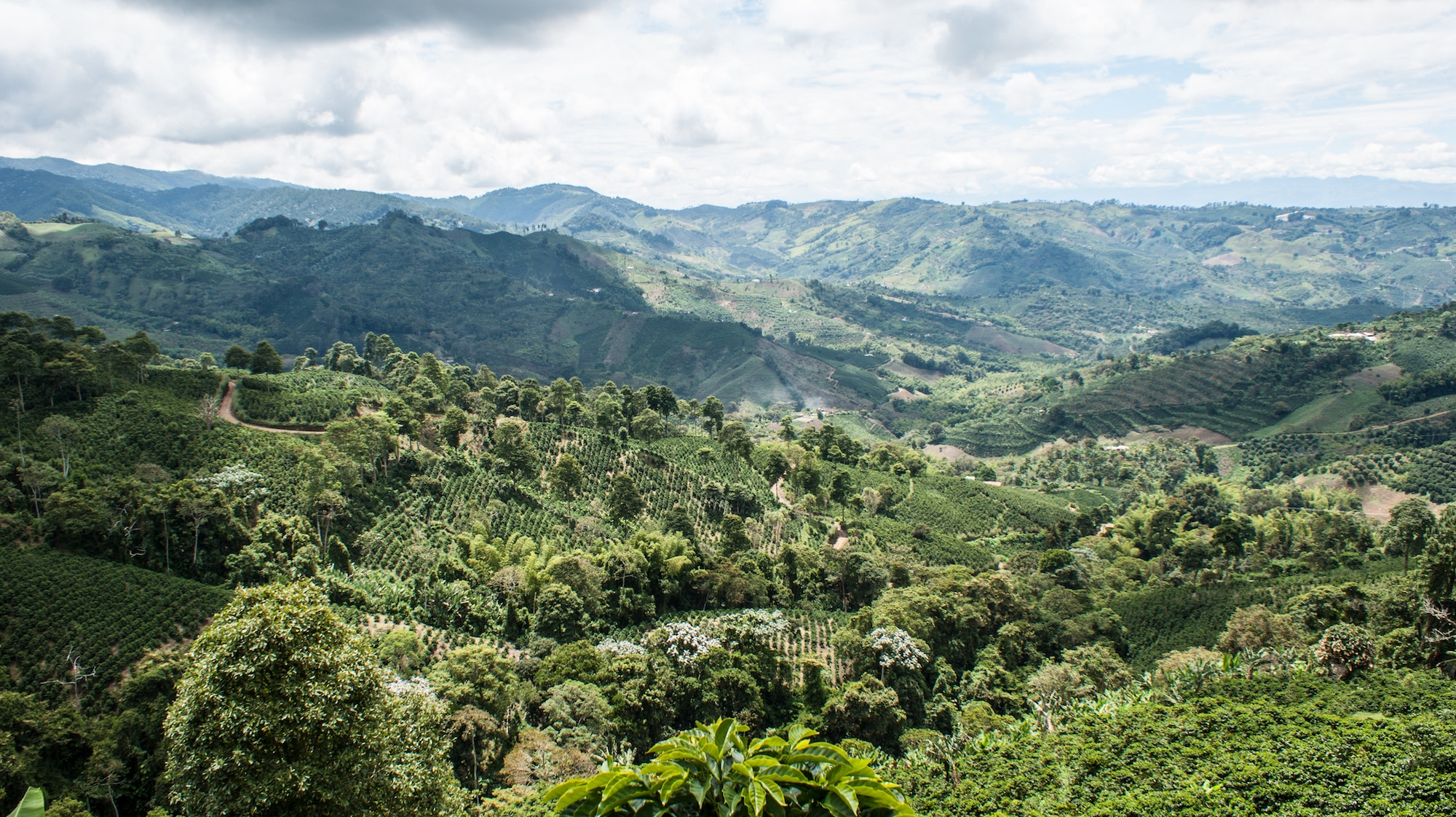 15 Things you'll learn when backpacking in Colombia24