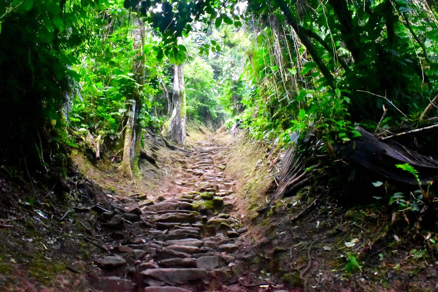 Lost City Trek - Magic Tour Colombia
