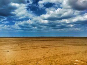 Desert Ahuyama
